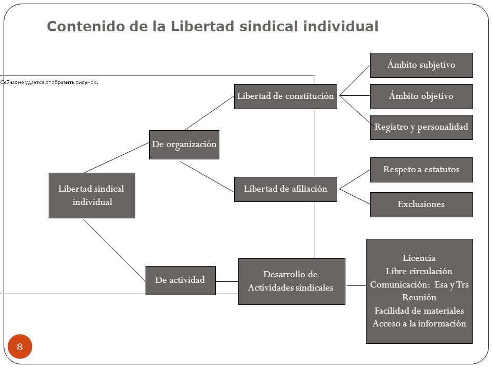 8 De organización De actividad Libertad sindical individual Libertad de constitución Libertad de afiliación Desarrollo de Actividades sindicales Conte