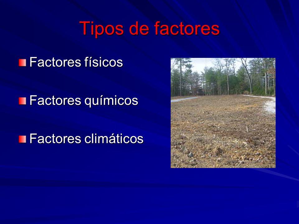 Orden de importancia por su efecto en la productividad Macroclima Clima local Suelo Suelo - Propiedades físicas - Propiedades físicas - Propiedades químico- nutritivas.