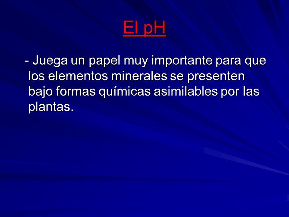 El pH - Juega un papel muy importante para que los elementos minerales se presenten bajo formas químicas asimilables por las plantas. - Juega un papel