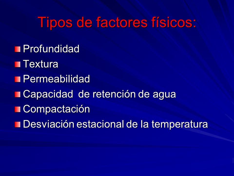 Tipos de factores físicos: ProfundidadTexturaPermeabilidad Capacidad de retención de agua Compactación Desviación estacional de la temperatura