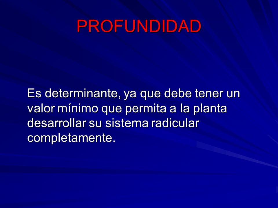 PROFUNDIDAD Es determinante, ya que debe tener un valor mínimo que permita a la planta desarrollar su sistema radicular completamente. Es determinante