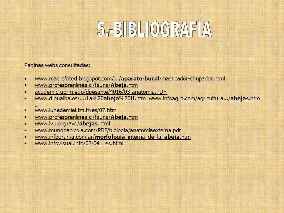 Páginas webs consultadas: www.macrofoted.blogspot.com/.../aparato-bucal-masticador-chupador.html www.profesorenlinea.cl/fauna/Abeja.htm academic.uprm.