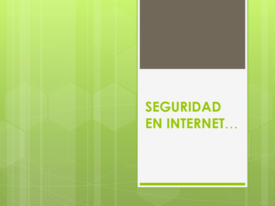 SEGURIDAD EN INTERNET …