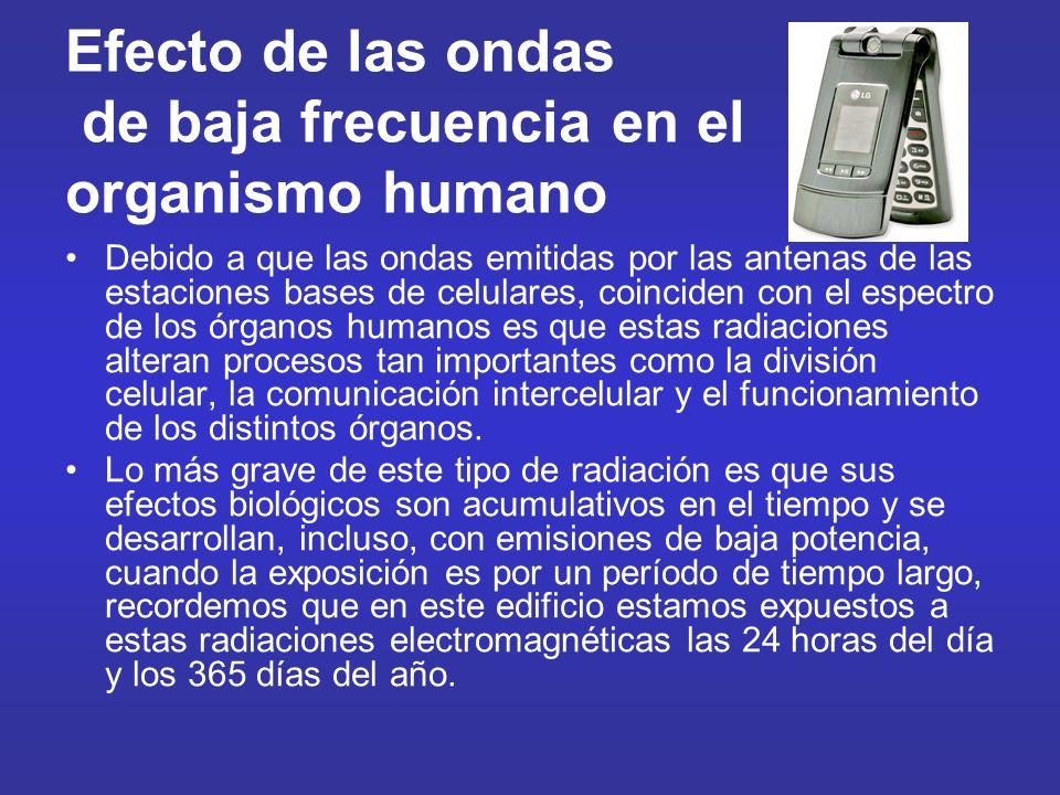 Efecto de las ondas de baja frecuencia en el organismo humano Debido a que las ondas emitidas por las antenas de las estaciones bases de celulares, co