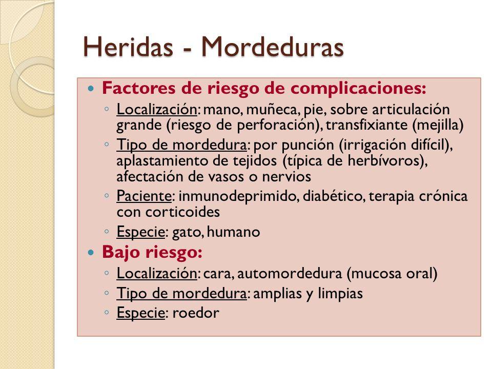 Heridas - Mordeduras Factores de riesgo de complicaciones: Localización: mano, muñeca, pie, sobre articulación grande (riesgo de perforación), transfi