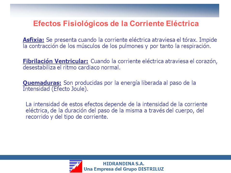 HIDRANDINA S.A. Una Empresa del Grupo DISTRILUZ HIDRANDINA S.A. Una Empresa del Grupo DISTRILUZ ¿Cómo se Produce una Descarga Eléctrica? Una persona s