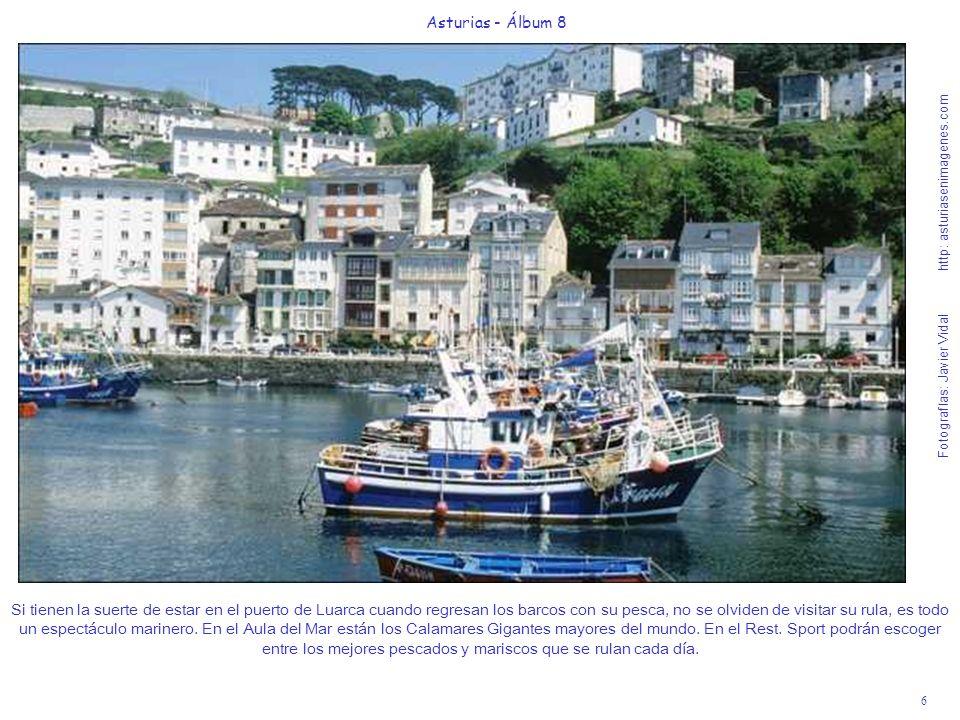 6 Asturias - Álbum 8 Fotografías: Javier Vidal http: asturiasenimagenes.com Si tienen la suerte de estar en el puerto de Luarca cuando regresan los ba
