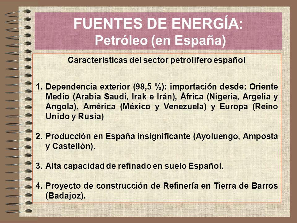 FUENTES DE ENERGÍA: Petróleo (en España) Características del sector petrolífero español 1.Dependencia exterior (98,5 %): importación desde: Oriente Me