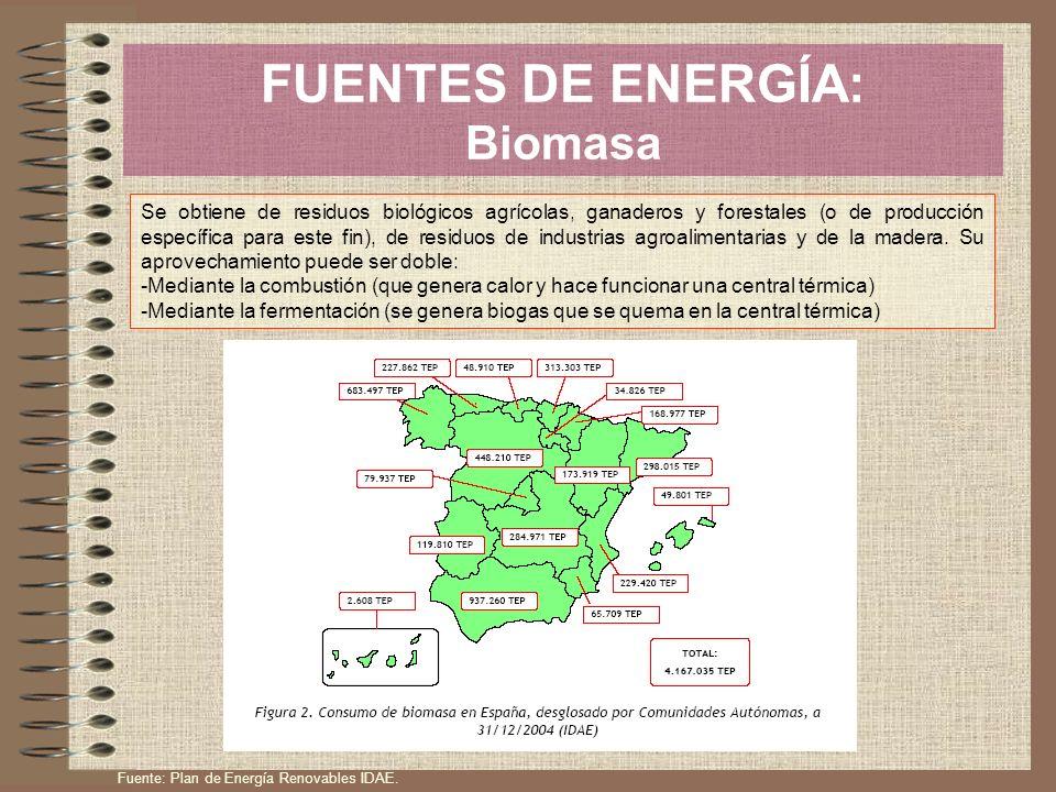 FUENTES DE ENERGÍA: Biomasa Se obtiene de residuos biológicos agrícolas, ganaderos y forestales (o de producción específica para este fin), de residuo