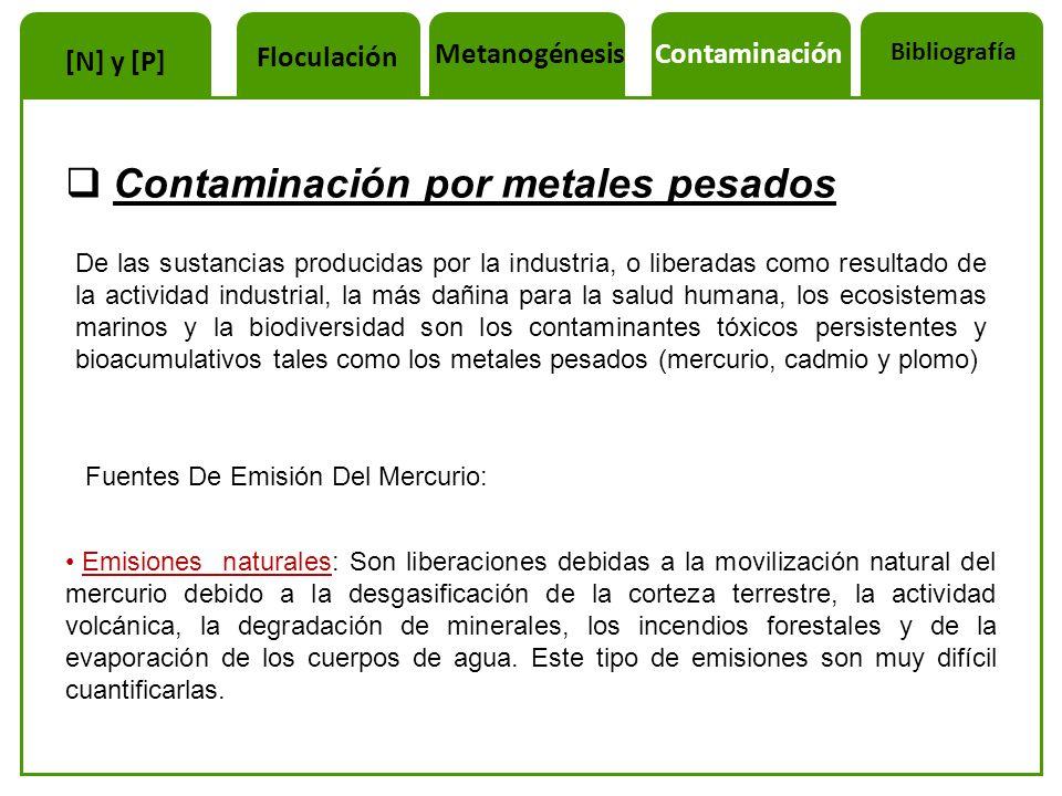 Contaminación por metales pesados De las sustancias producidas por la industria, o liberadas como resultado de la actividad industrial, la más dañina