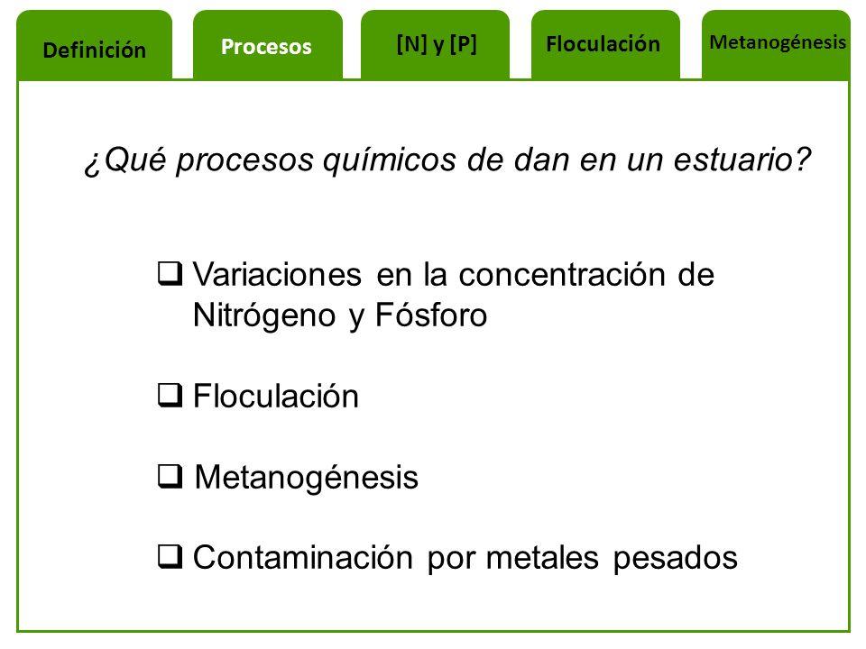 ¿Qué procesos químicos de dan en un estuario? Variaciones en la concentración de Nitrógeno y Fósforo Floculación Metanogénesis Contaminación por metal