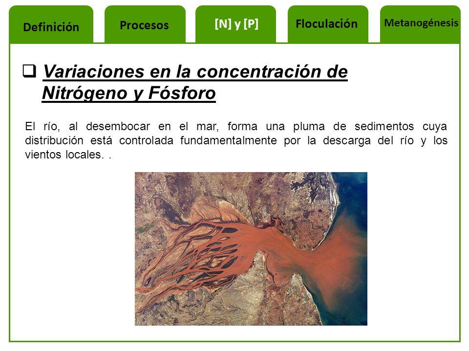 Variaciones en la concentración de Nitrógeno y Fósforo El río, al desembocar en el mar, forma una pluma de sedimentos cuya distribución está controlad