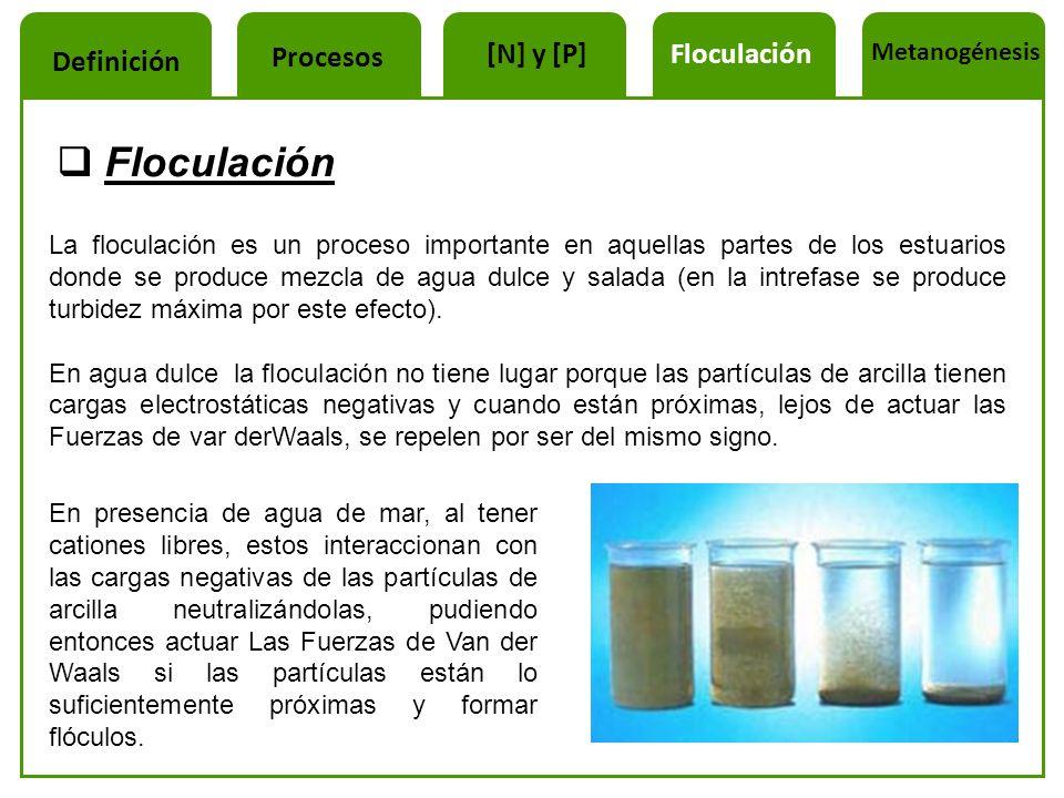 Floculación La floculación es un proceso importante en aquellas partes de los estuarios donde se produce mezcla de agua dulce y salada (en la intrefas