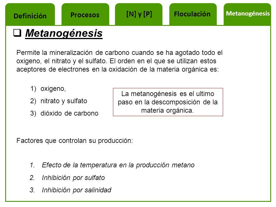 Metanogénesis Permite la mineralización de carbono cuando se ha agotado todo el oxigeno, el nitrato y el sulfato. El orden en el que se utilizan estos