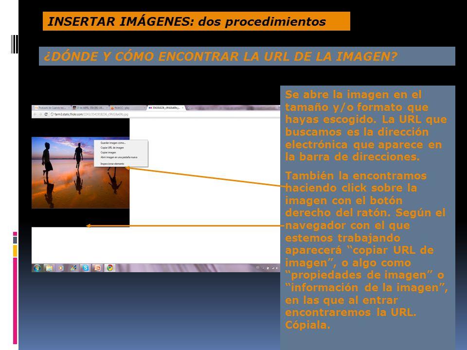 Se abre la imagen en el tamaño y/o formato que hayas escogido. La URL que buscamos es la dirección electrónica que aparece en la barra de direcciones.