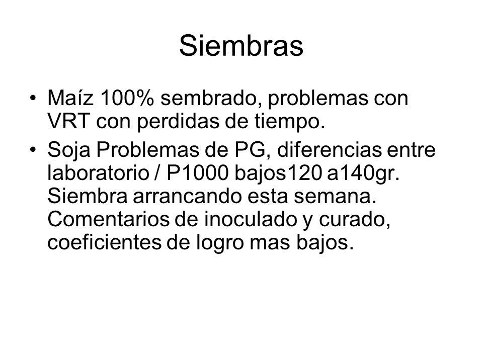 Siembras Maíz 100% sembrado, problemas con VRT con perdidas de tiempo. Soja Problemas de PG, diferencias entre laboratorio / P1000 bajos120 a140gr. Si