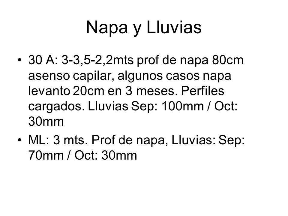 Napa y Lluvias 30 A: 3-3,5-2,2mts prof de napa 80cm asenso capilar, algunos casos napa levanto 20cm en 3 meses. Perfiles cargados. Lluvias Sep: 100mm
