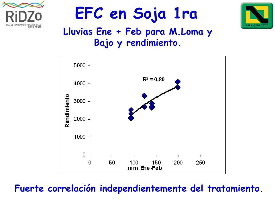 EFC en Soja 1ra Lluvias Ene + Feb para M.Loma y Bajo y rendimiento. Fuerte correlación independientemente del tratamiento.