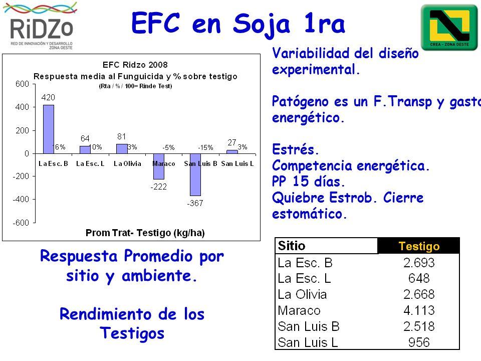 EFC en Soja 1ra Respuesta Promedio por sitio y ambiente. Rendimiento de los Testigos Variabilidad del diseño experimental. Patógeno es un F.Transp y g