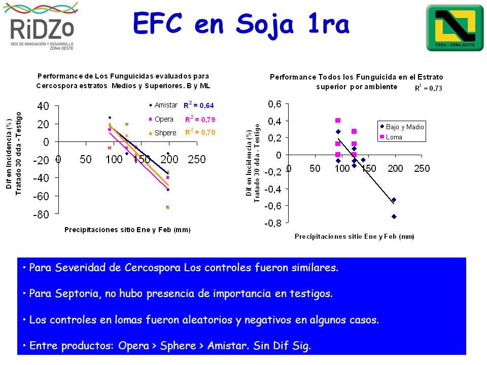 EFC en Soja 1ra Para Severidad de Cercospora Los controles fueron similares. Para Septoria, no hubo presencia de importancia en testigos. Los controle