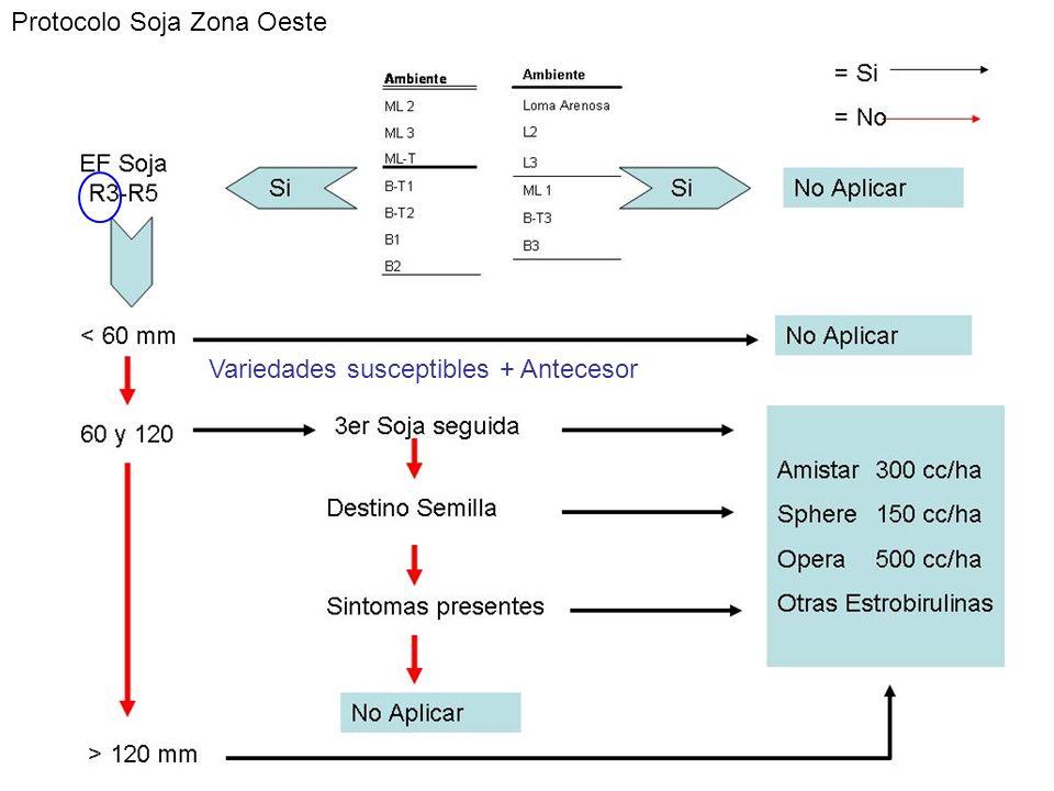 Protocolo Soja Zona Oeste Variedades susceptibles + Antecesor