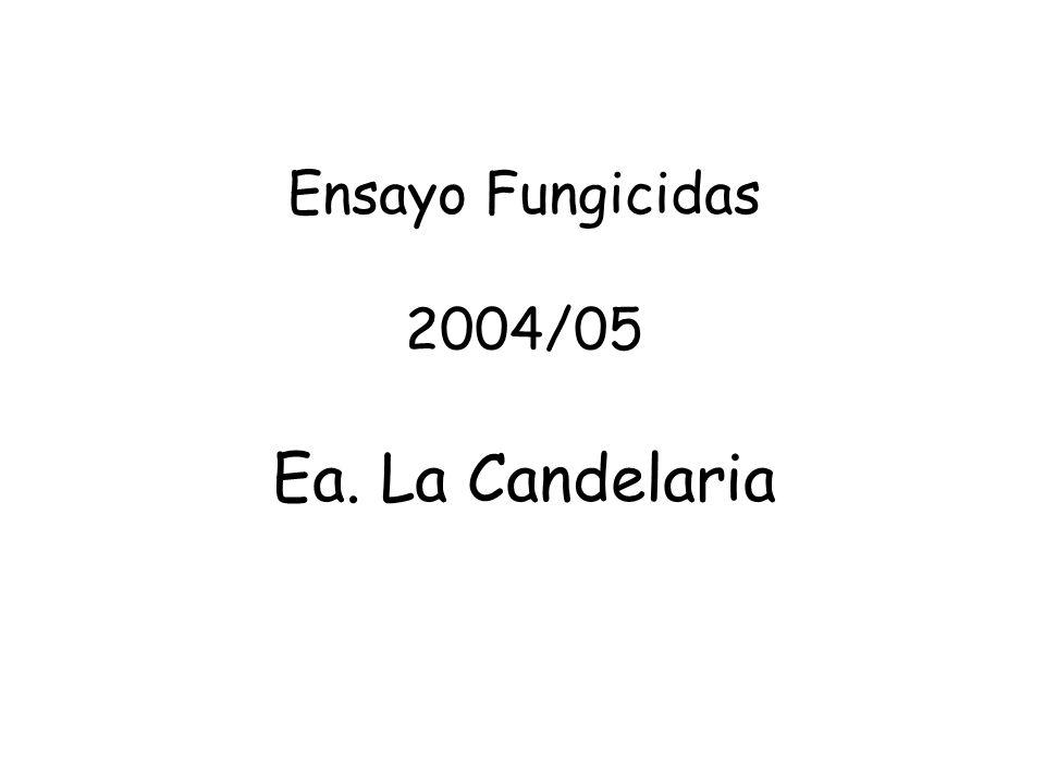 Ensayo Fungicidas 2004/05 Ea. La Candelaria