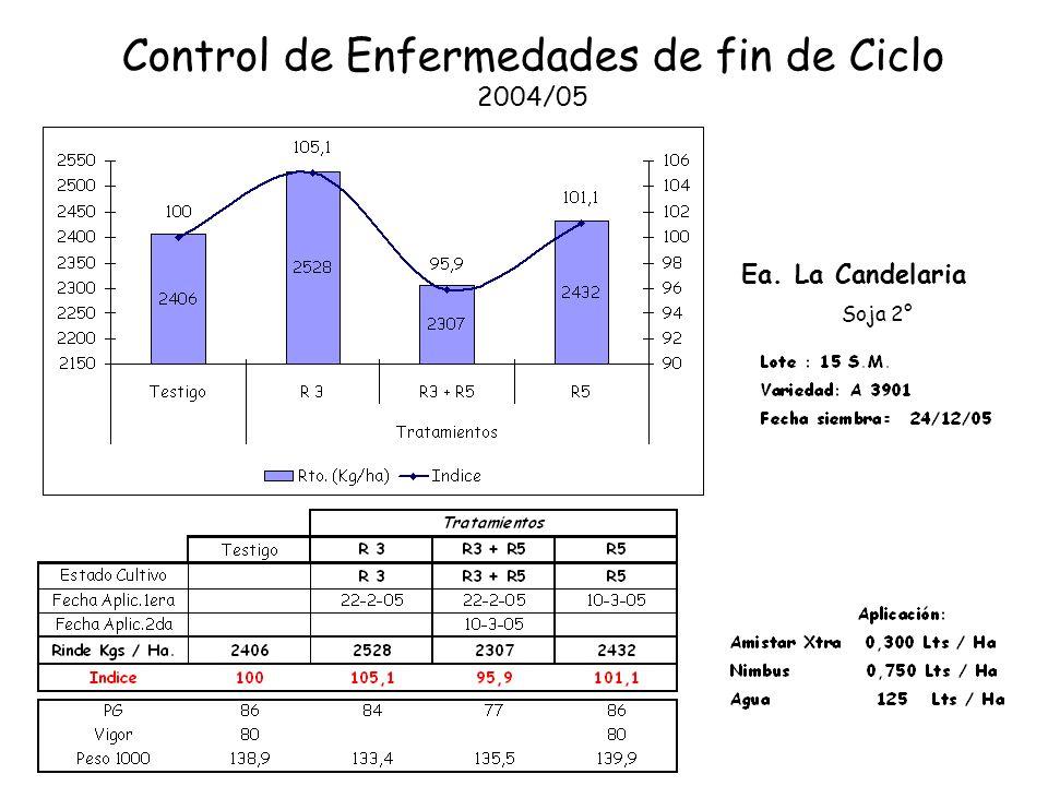 Control de Enfermedades de fin de Ciclo 2004/05 Ea. La Candelaria Soja 2°