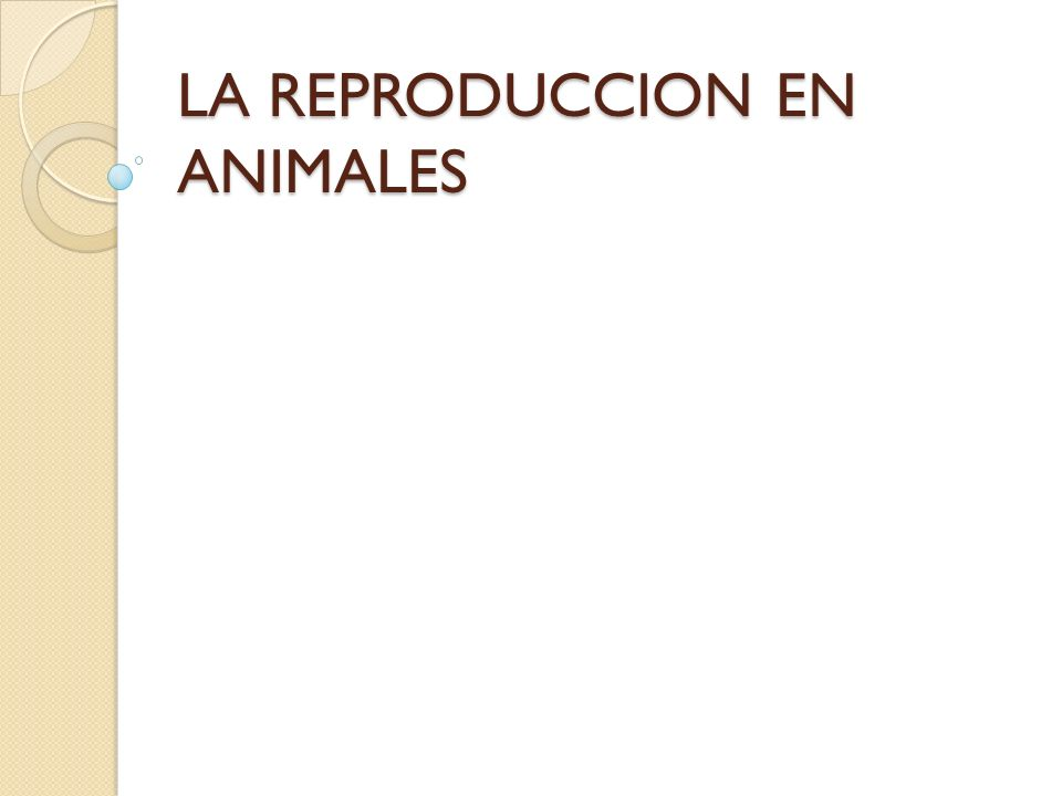 Naturaleza del proceso reproductor La reproducción es un mecanismo encaminado a perpetuar la especie.