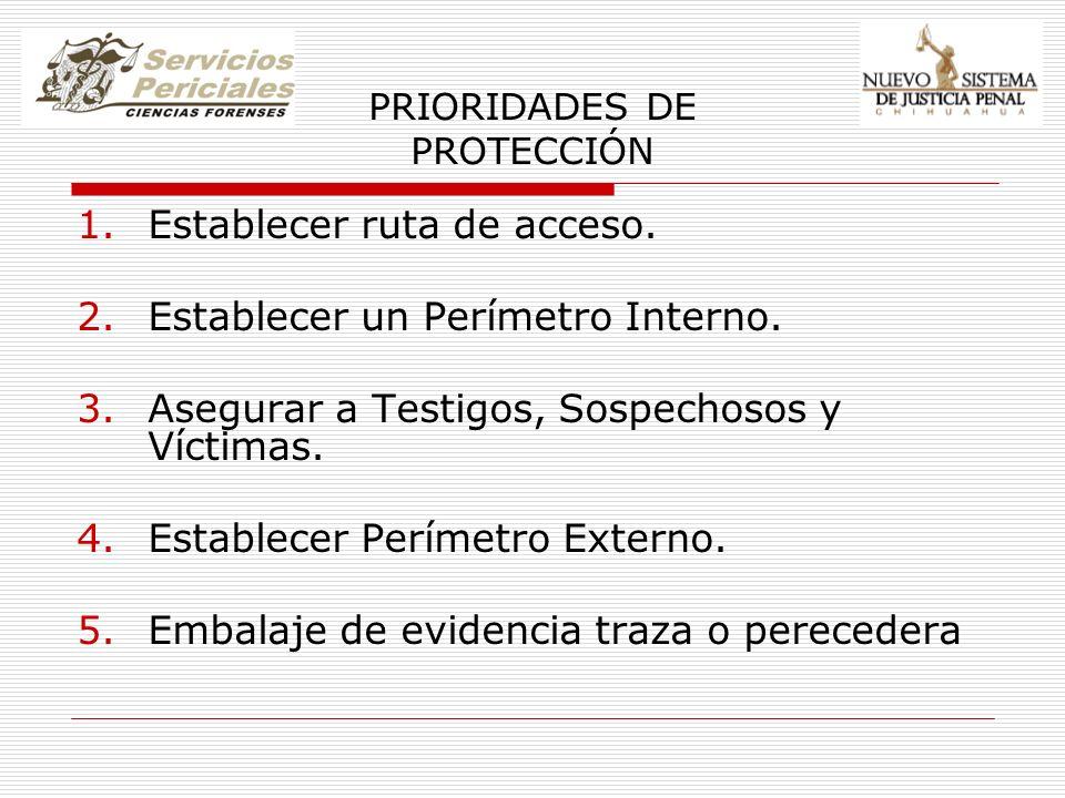 PRIORIDADES DE PROTECCIÓN 1.Establecer ruta de acceso. 2.Establecer un Perímetro Interno. 3.Asegurar a Testigos, Sospechosos y Víctimas. 4.Establecer
