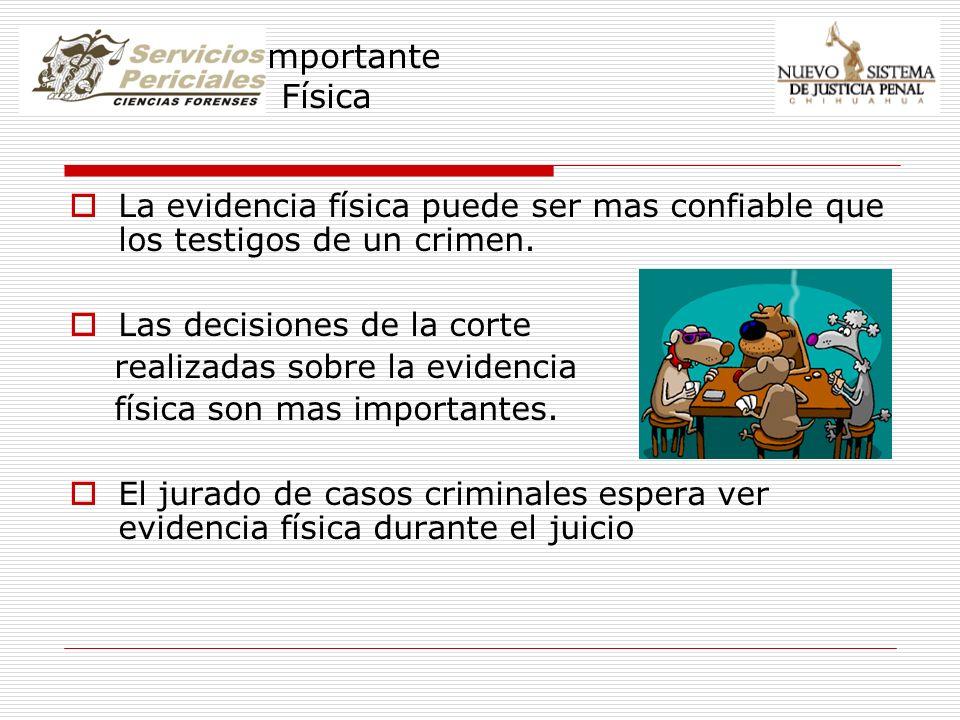 Por que es importante la Evidencia Física La evidencia física puede ser mas confiable que los testigos de un crimen. Las decisiones de la corte realiz