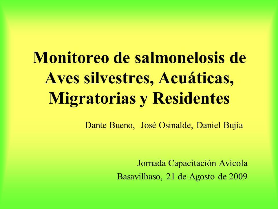 Monitoreo de salmonelosis de Aves silvestres, Acuáticas, Migratorias y Residentes Jornada Capacitación Avícola Basavilbaso, 21 de Agosto de 2009 Dante