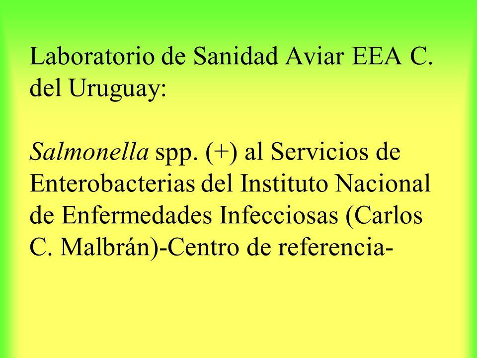 Laboratorio de Sanidad Aviar EEA C. del Uruguay: Salmonella spp. (+) al Servicios de Enterobacterias del Instituto Nacional de Enfermedades Infecciosa