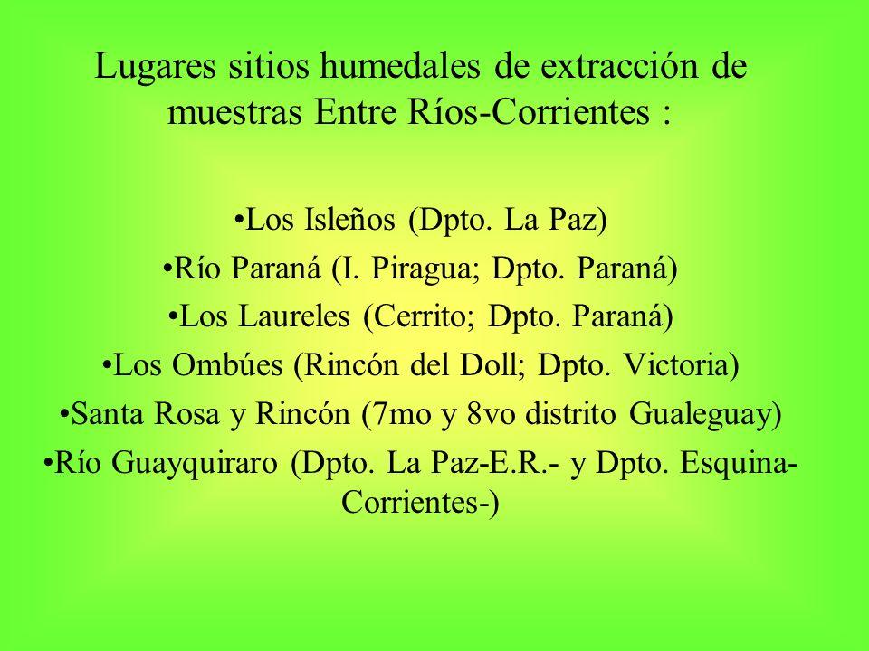 Lugares sitios humedales de extracción de muestras Entre Ríos-Corrientes : Los Isleños (Dpto. La Paz) Río Paraná (I. Piragua; Dpto. Paraná) Los Laurel