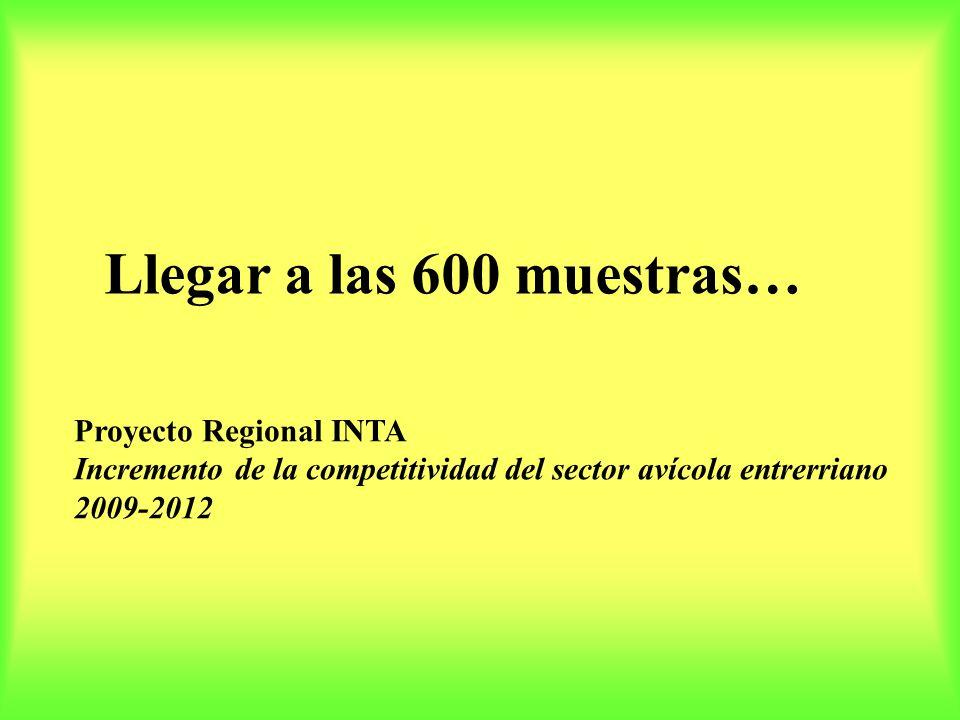 Llegar a las 600 muestras… Proyecto Regional INTA Incremento de la competitividad del sector avícola entrerriano 2009-2012