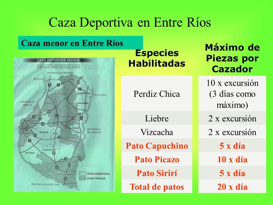Caza menor en Entre Ríos Caza Deportiva en Entre Ríos Especies Habilitadas Máximo de Piezas por Cazador Perdiz Chica 10 x excursión (3 días como máxim