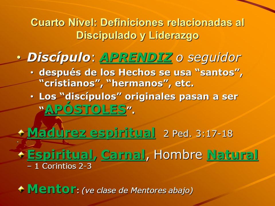 Cuarto Nivel: Definiciones relacionadas al Discipulado y Liderazgo Oikonomia = Administración, MAYORDOMÍA o comisión de la gracia de Dios (Ef. 3:2) de
