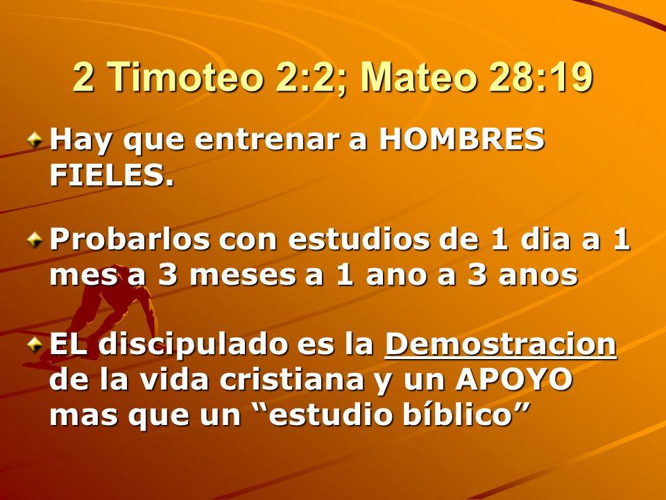 IV. CUATRO NIVELES DE CRECIMIENTO CRISTIANO El Discipulado