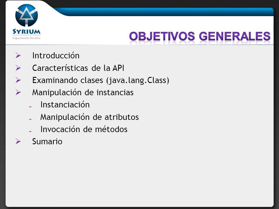 Introducción Características de la API Examinando clases (java.lang.Class) Manipulación de instancias Instanciación Manipulación de atributos Invocaci