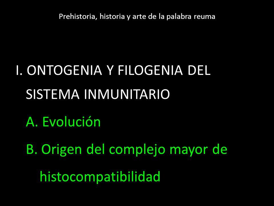 Presentación antigénica MHC I Abbas A. Inmunología Celular y molecular 2012