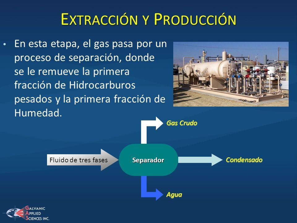E XTRACCIÓN Y P RODUCCIÓN En esta etapa, el gas pasa por un proceso de separación, donde se le remueve la primera fracción de Hidrocarburos pesados y