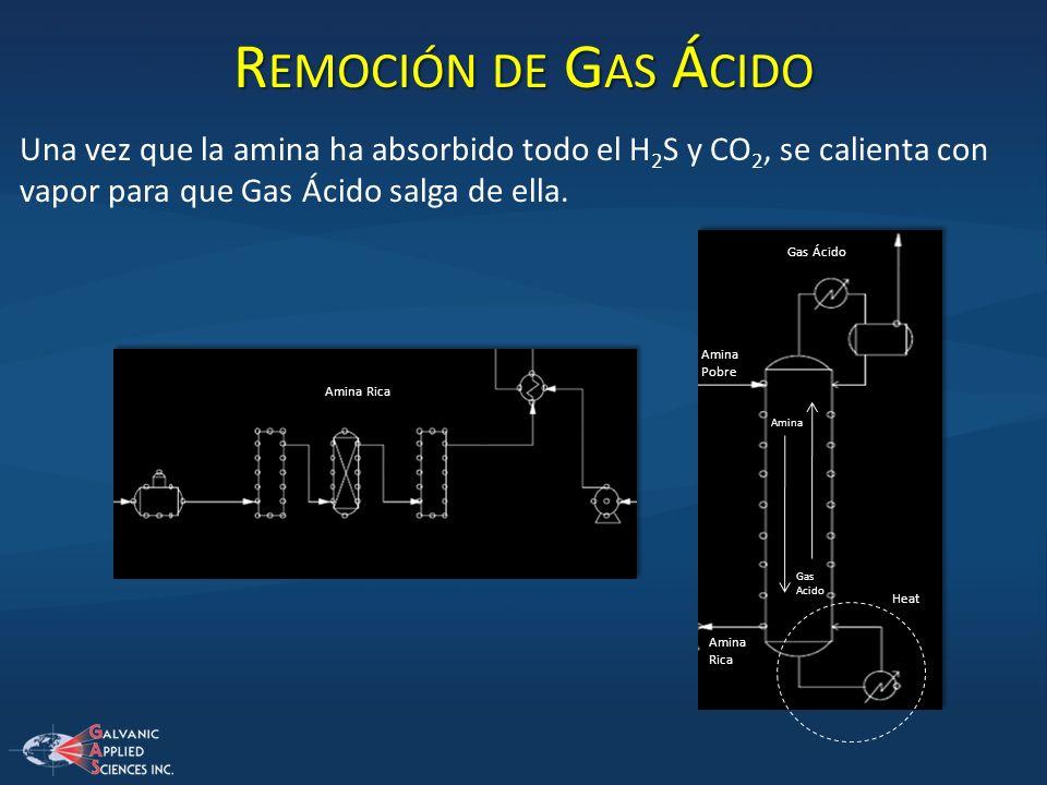 R EMOCIÓN DE G AS Á CIDO Una vez que la amina ha absorbido todo el H 2 S y CO 2, se calienta con vapor para que Gas Ácido salga de ella. Gas Ácido Ami