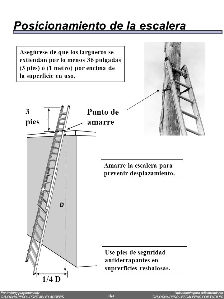 Unicamente para adiestramiento OR-OSHA PESO - ESCALERAS PORTATILES For training purposes only OR-OSHA PESO - PORTABLE LADDERS 20 An easy way to know if the ladder is at the correct angle: Put one foot on the first step of the ladder.