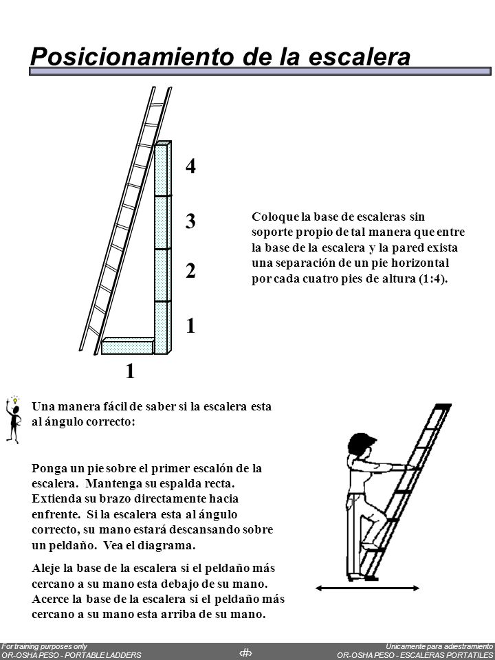 Unicamente para adiestramiento OR-OSHA PESO - ESCALERAS PORTATILES For training purposes only OR-OSHA PESO - PORTABLE LADDERS 22 Over half of all ladder accidents are caused by falls when the ladder tips over as a result of poor ladder placement.