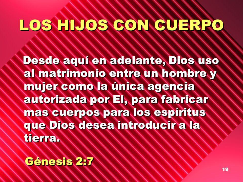 19 LOS HIJOS CON CUERPO Desde aquí en adelante, Dios uso al matrimonio entre un hombre y mujer como la única agencia autorizada por El, para fabricar