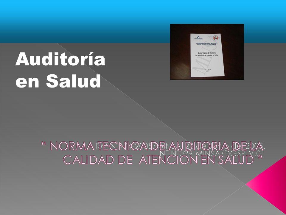 ESTUDIO PRELIMINAR Y PROGRAMACIÓN PROGRAMA DE TRABAJO CONOCIMIENTO GENERAL DE LA ORGANIZACIÓN CONOCIMIENTO GENERAL DE LA ORGANIZACIÓN CONOCIMIENTO DE LOS PROCESOS MEDULARES DE LA ORGANIZACIÓN CONOCIMIENTO DE LOS PROCESOS MEDULARES DE LA ORGANIZACIÓN