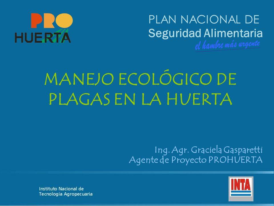 PLAN NACIONAL DE Seguridad Alimentaria MANEJO ECOLÓGICO DE PLAGAS EN LA HUERTA Ing. Agr. Graciela Gasparetti Agente de Proyecto PROHUERTA