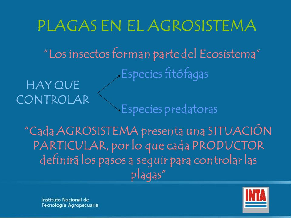 PLAGAS EN EL AGROSISTEMA Los insectos forman parte del Ecosistema HAY QUE CONTROLAR Especies fitófagas Especies predatoras Cada AGROSISTEMA presenta u