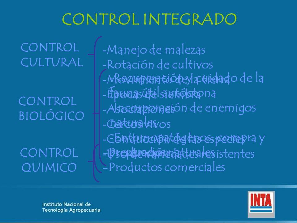 CONTROL INTEGRADO CONTROL CULTURAL - Manejo de malezas - Rotación de cultivos - Movimiento de la tierra - Épocas de siembra - Asociaciones - Cercos vi