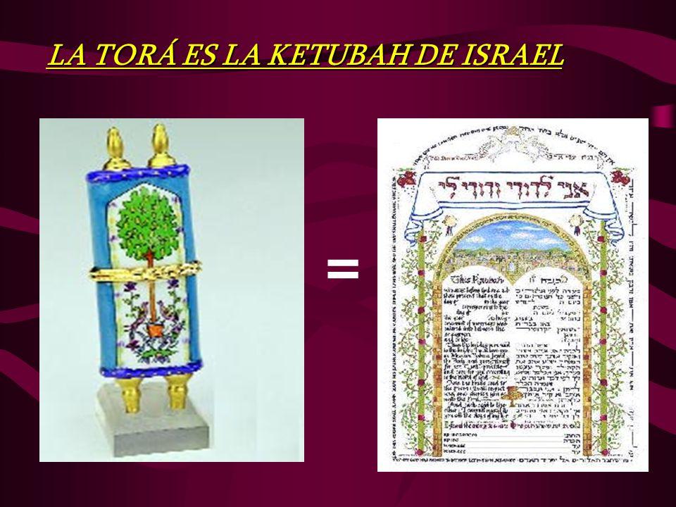 = LA TORÁ ES LA KETUBAH DE ISRAEL
