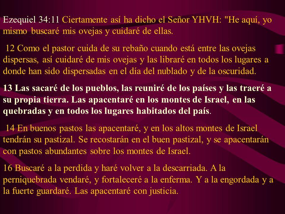 Ezequiel 34:11 Ciertamente así ha dicho el Señor YHVH: